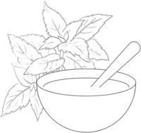 Sketch - Rosemary