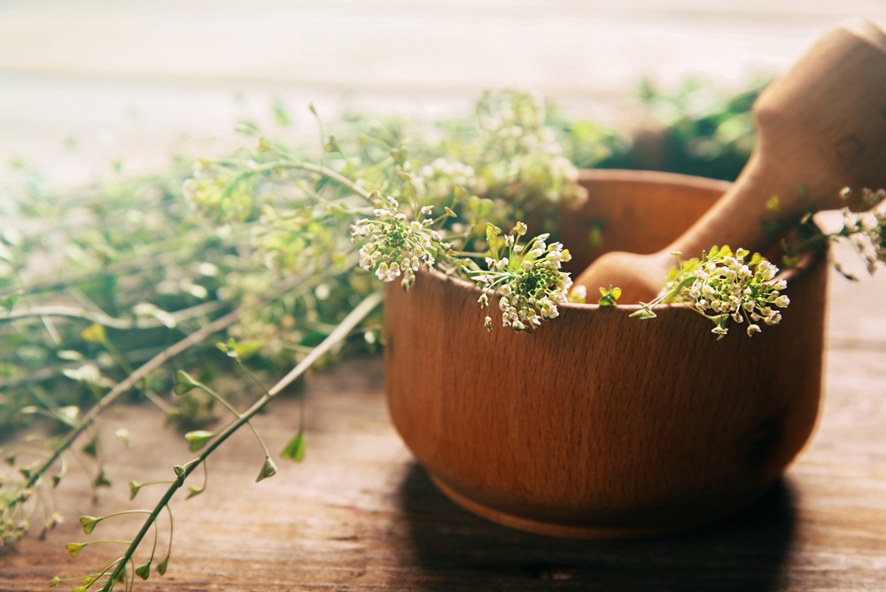 Mortar and pestle - Herb
